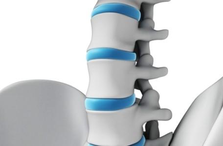 posture_spine_hips